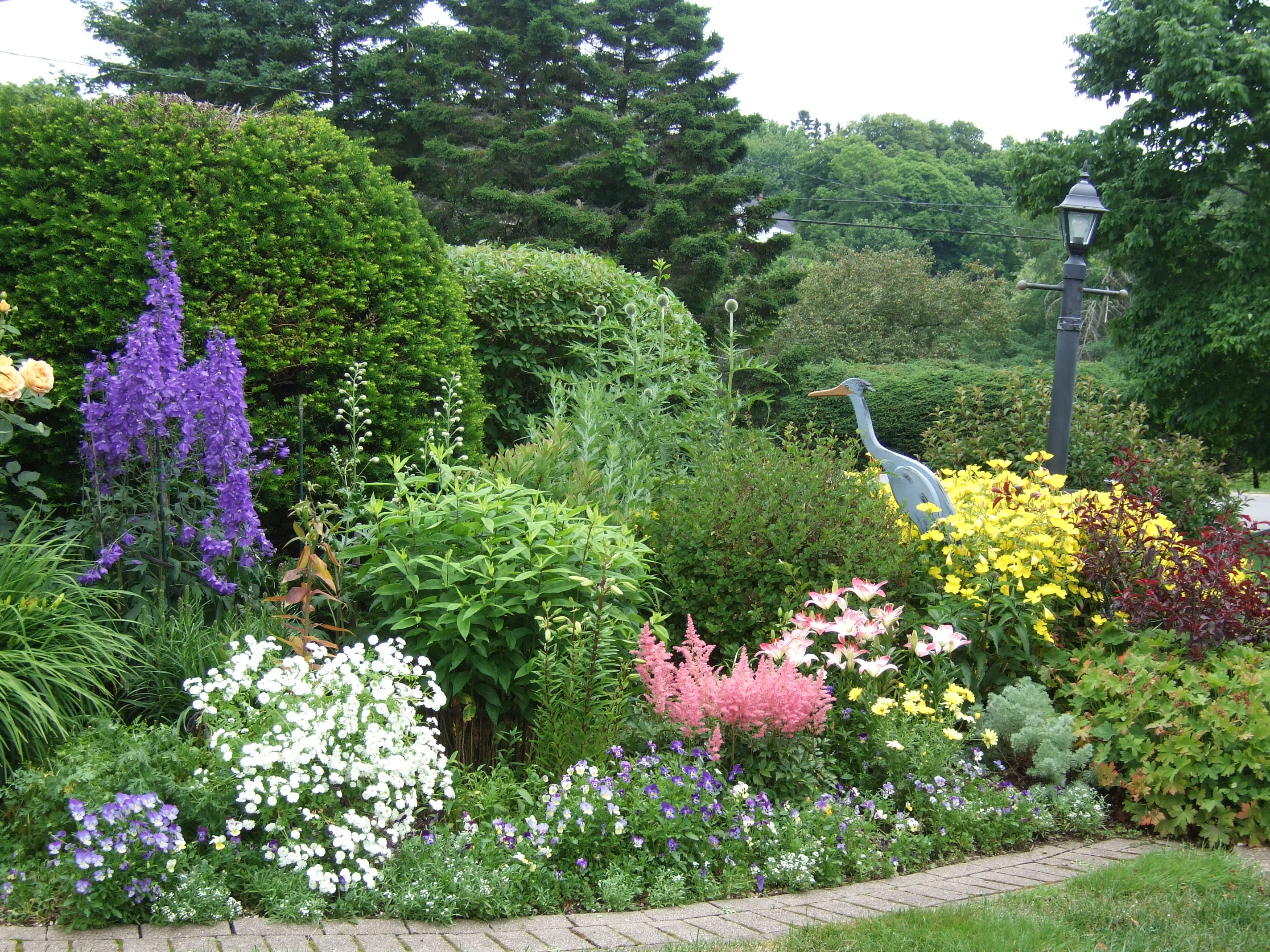 Chester gardens after the rain chester garden club - Perennial flowers for borders visual gardens ...