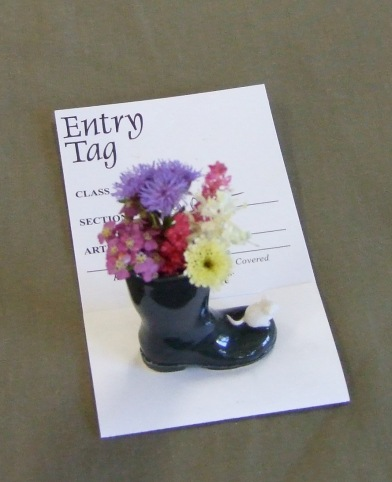 """The entries in the miniature class """"fairy Dust"""" were really really tiny!"""