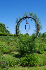 june-18th-tangled-garden-imgp2400