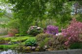 may-29th-annapolis-historic-gardens-imgp2072