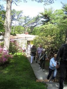 07 June (25) Halls Road gardens