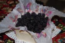 Sheila's Blackberries