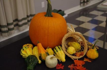 Pumpkin and Gourds for Fall